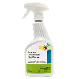 Rose & Ornamental Disease Control Plant Spray