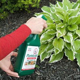 Plantskydd<sup>®</sup> Repellent