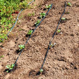 Drip Irrigation System for Gardens