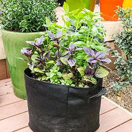 Gardens Alive! Coir Brick