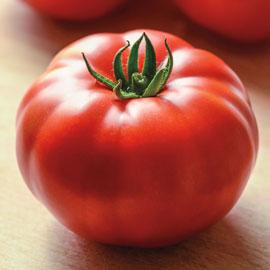 Genuwine Tomato