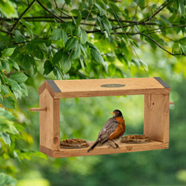 WellBuilt™ Fruit & Grub Bird Feeder