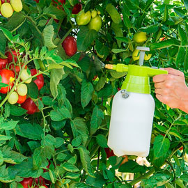 Handheld Garden Sprayer