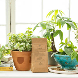 Houseplants Alive!<sup>®</sup> All-Natural Fertilizer