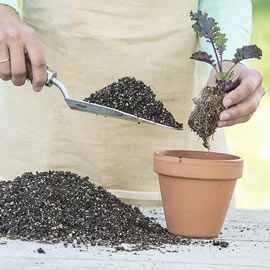 Perfect Start<sup>™</sup>  Natural Potting Soil