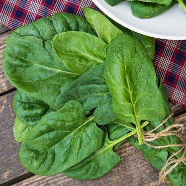 Space Hybrid Spinach