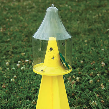 Ambush™ Stink Bug Trap