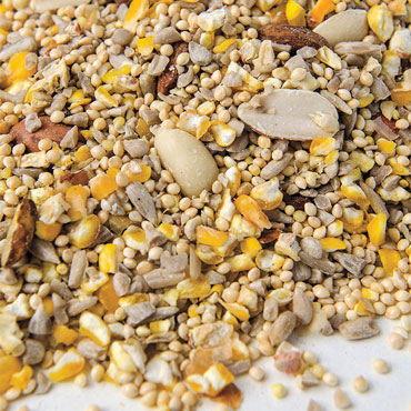 Original No-Waste Bird Food Mix