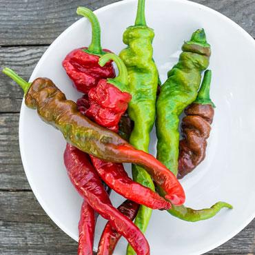 El Señor Hot Pepper