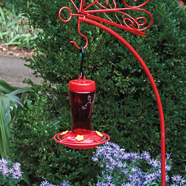 The Perfect Hummingbird Feeder