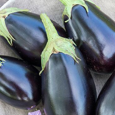 Eclipse Hybrid Eggplant