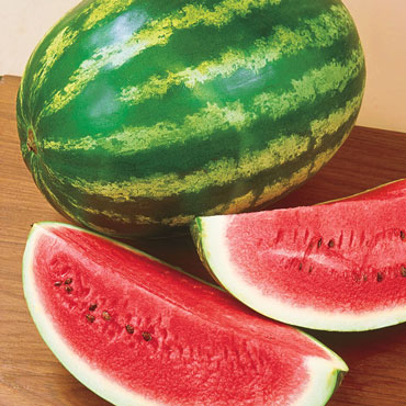 Royalty Hybrid Watermelon