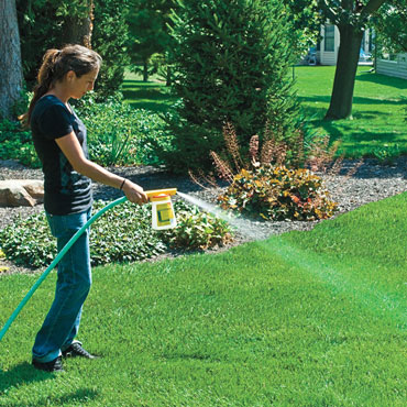 Foliar Lawns Alive!™ Fertilizer