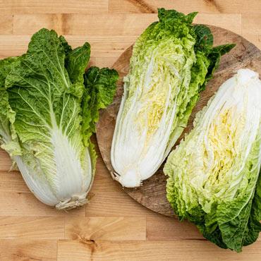 Cabbage Chinese Emiko Hybrid Pkt