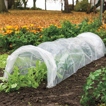 Polythene Grow Tunnel
