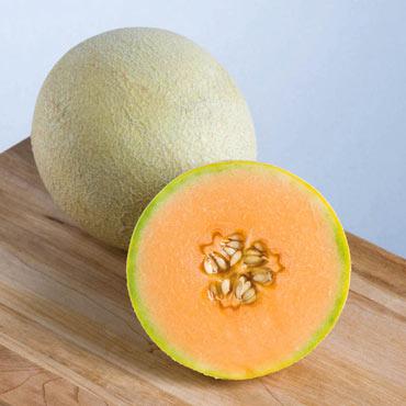 Melon Sarah's Choice Hybrid Pkt
