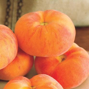 Flat Wonderful™ Peach