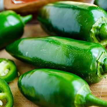 Gurney's<sup>®</sup> Primo Jalapeno Hybrid Hot Pepper