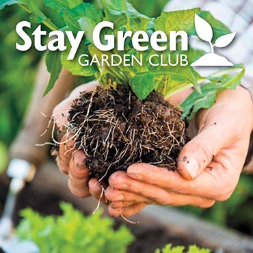 Stay Green Garden Club