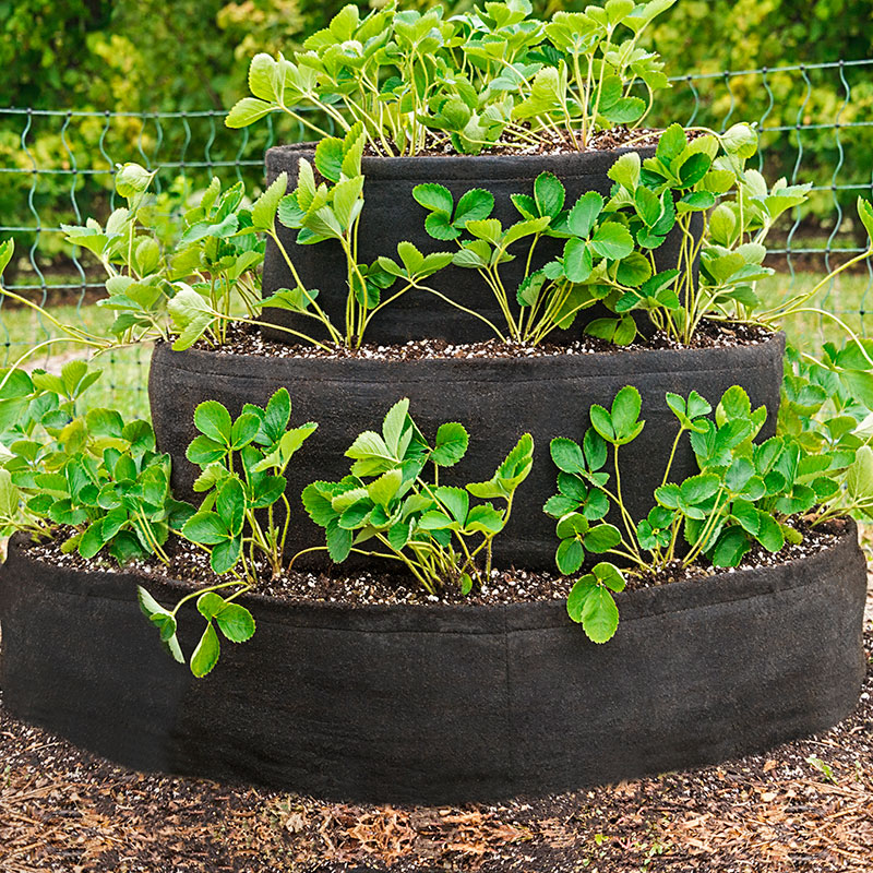 Grow Tub Tiered Strawberry Planter Raised Beds From Gardens Alive