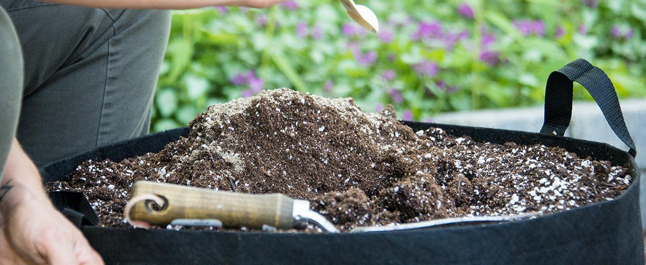 Alive!® Fertilizers for Gardens