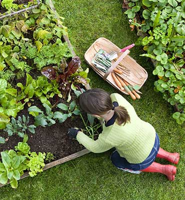 Gardens Alive - Organic Gardening, Lawn Care, and Natural Pest Solutions