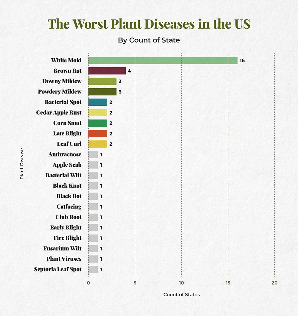 Chart denoting the worst plant diseases in the U.S.
