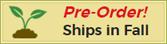 Ships in Fall