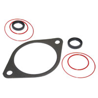 VACUUM PUMP SEAL KIT W/ EXTRA SEALS ('91.5-'02, 5.9L)