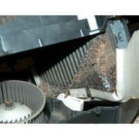 Blocked Dodge Ram AC Evaporator