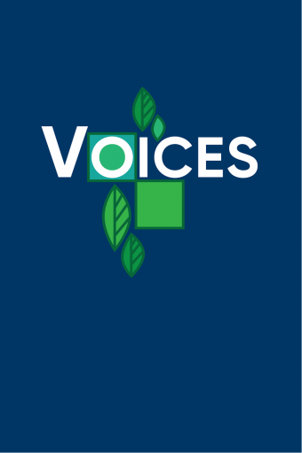 Voices - Guitar edition