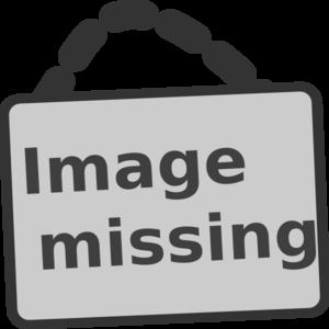 Image missing md