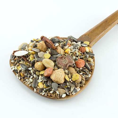 Great Companions Natural Select Macaw and Large Parrot Bird Food