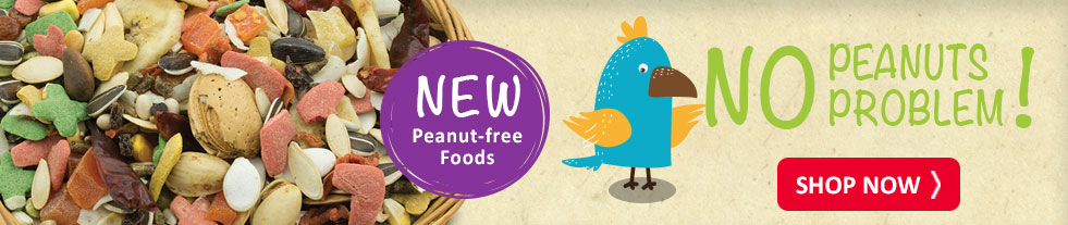 GC Peanut Free Food