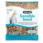 Sensible Seed for Medium Birds