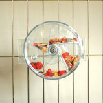 Foraging Wheel Bird Toy