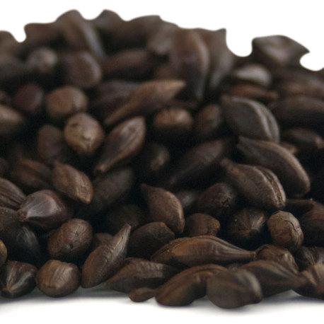 Swaen Chocolate Malt