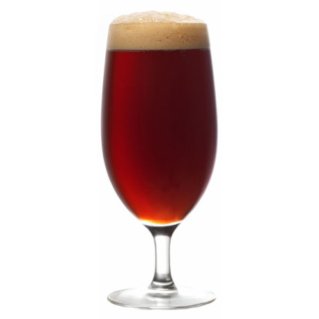 St. Gambrinus Spiced Holiday Ale Extract Kit