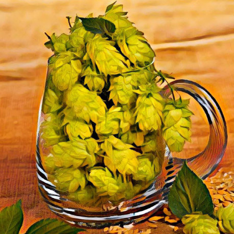 Cascade Wet Hopped Pale Ale Extract Kit