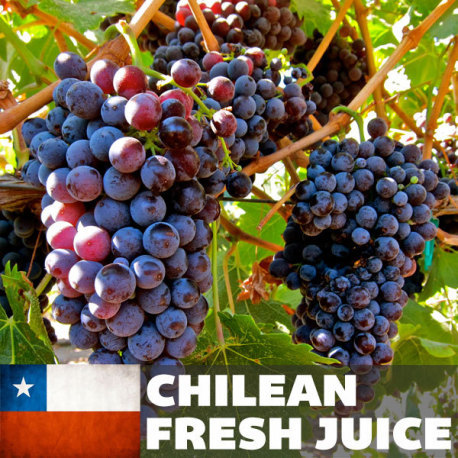 Chilean Carmenere Fresh Juice, 6 gallons