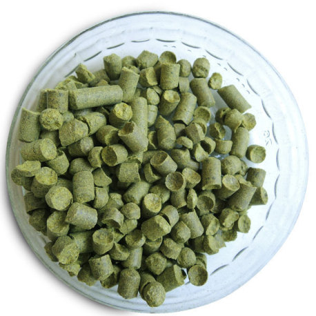 Hallertau Blanc Hop Pellets (German) - 1 oz.