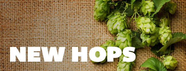 NEW Brewing Hops