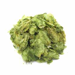 Fuggle Leaf Hops (US)