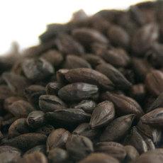 Briess Blackprinz Bitterless (Debittered) Black Malt
