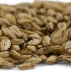 Briess Carapils® (Dextrine) Malt