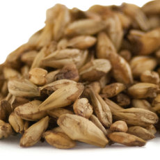 Briess Smoked Malt