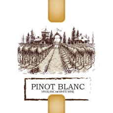 Pinot Blanc Self Adhesive Wine Labels, pkg of 30