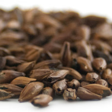 Swaen Kiln Coffee Malt