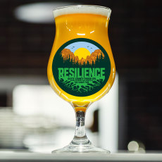 Sierra Nevada Resilience IPA Extract Kit