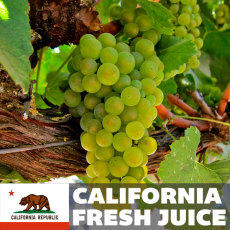 Chardonnay Fresh Juice, 6 gallons (California)
